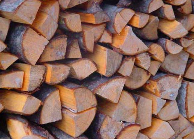 Vendita legna di faggio da ardere estense gas ferrara for Legna da ardere brianza