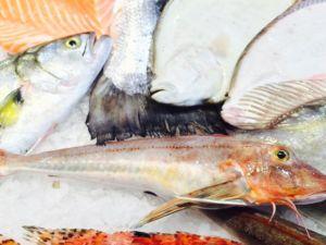 Pescheria con pesce fresco ogni giorno – Vicenza – Arzignano, Thiene, Montecchio Maggiore – Sarde Inn