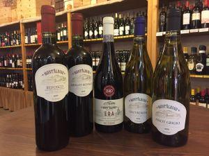 Vini Montalbano – Enoducale – Ferrara