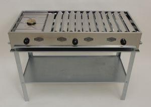 Barbecue gpl in acciaio offerta