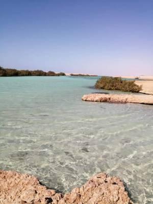 """Escursioni e trasporti a Sharm el sheikh Con """"VACANZE A SHARM """""""