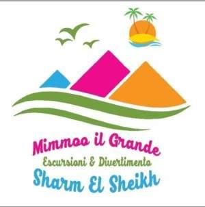 Escursioni a Sharm con Mimmoo il Grande
