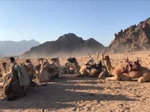 Quad safari nel deserto a sharm el sheikh con agenzia italiana IL TUO VIAGGIO A SHARM