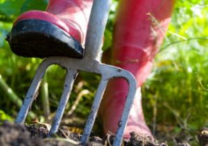 Riparazione e affilatura attrezzi agricoli – Ferrara – Masi Torello, Voghiera, Bondeno – OMA AFFILATURA
