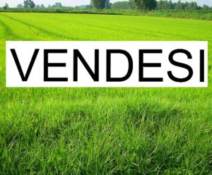 Vendita terreno edificabile in zona tranquilla a Cornedo Vicentino – Vicenza