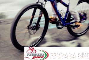 Vendita biciclette da città-city bike – Rovigo – Ferrara Bike