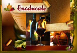 Vendita e produzione di vini sfusi e in bottiglia a Ferrara