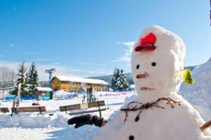 Albergo ideale per settimane bianche – Vicenza – Asiago – Albergo Ristorante Orthal