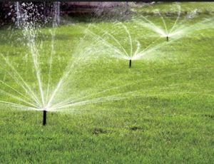 Impianti di irrigazione per giardino – Venezia – Camponogara – Vivai Barendi